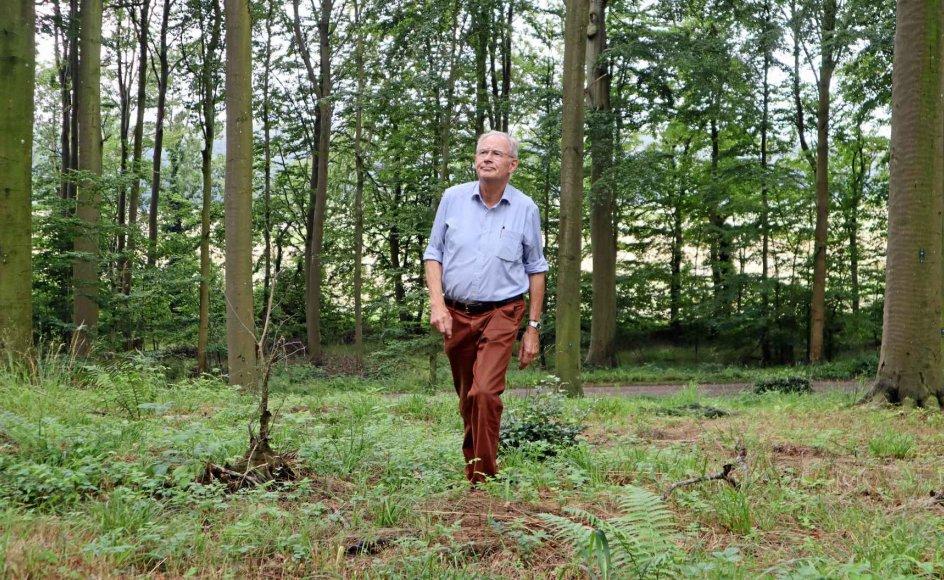 Det sidste hvilested for de naturbegravede skal ligne en skov, og derfor må intet mindeudtryk være fyldigt. Det siger greve Henrik Ahlefeldt-Laurvig, som driver skovbegravelsespladsen. – Alle fotos: Jens Mathiasen.