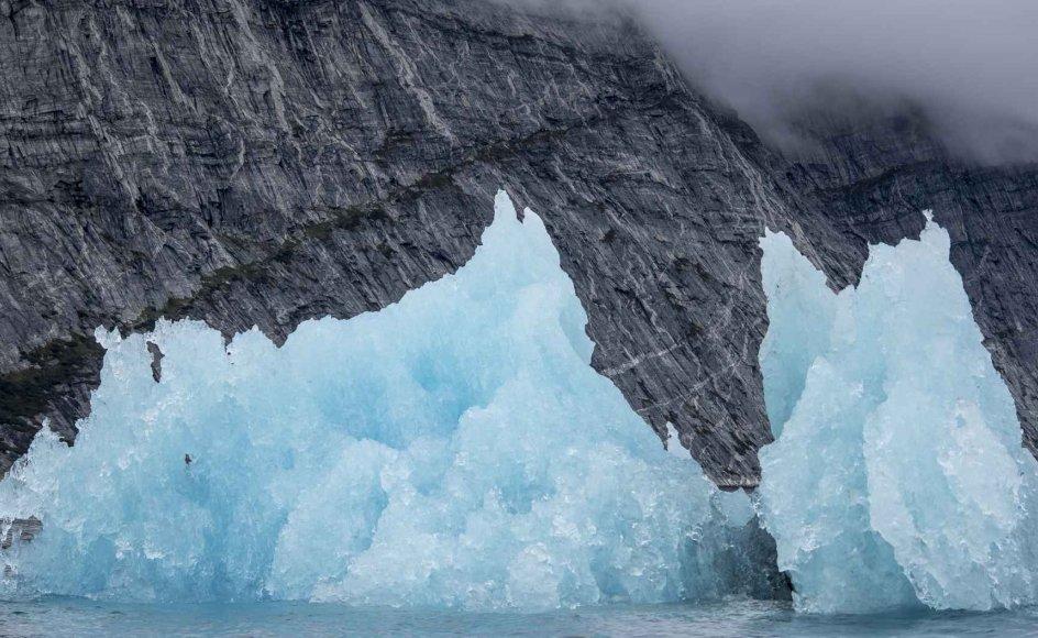 - Klimaforandringer er et af de vigtigste problemstillinger, og derfor er det selvfølgelig ærgerligt, når der kommer unødvendig polemik, der kan gøre folk i tvivl, om det her er vigtigt eller ej, siger BO Øksnebjerg, der er generalsekretær i Verdensnaturfonden. (Arkivfoto)