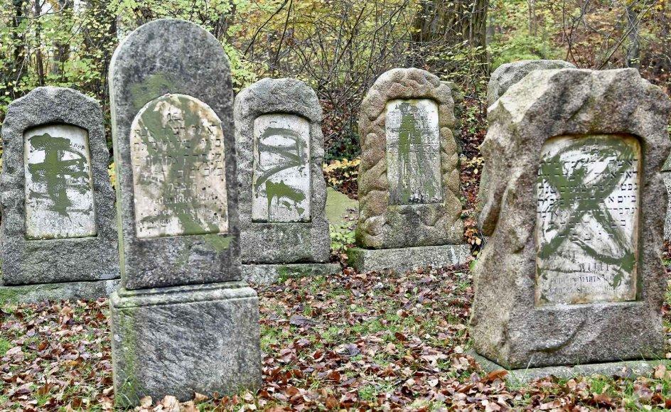 Væltede gravsten og gravsten overhældt med grøn maling var det syn, der mødte folk, som lørdag eftermiddag besøgte den jødiske gravplads i Randers. – Foto: Bo Amstrup/Ritzau Scanpix.