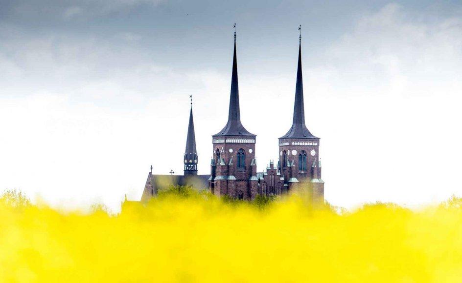 Kan kirkens progressive grønne image forliges med den vetoret, som stiftsøvrigheden har, når det kommet til opførelse af nybyggerier, herunder vindmøller? spørger branchechef i Dansk Energi Kristine van het Erve Grunnet. Ja, mener blandt andre Peter Fischer-Møller, biskop over Roskilde Stift (billedet).