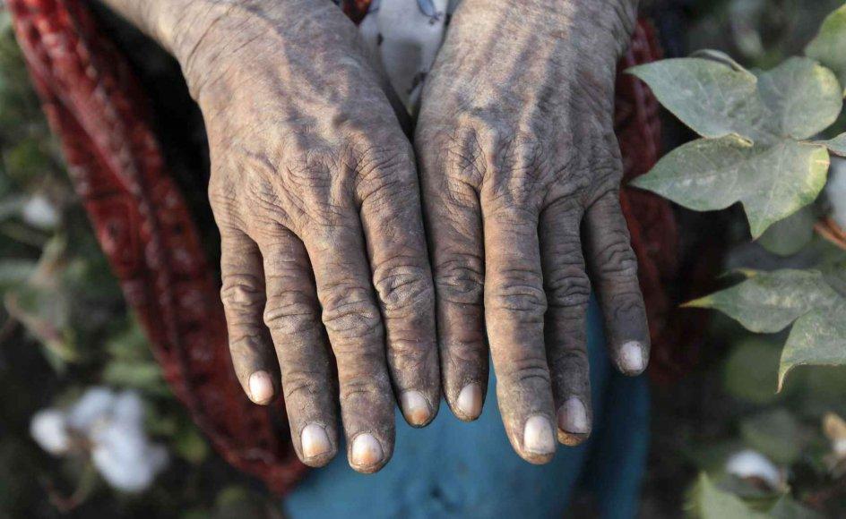 Kvinder oplever de daglige konsekvenser af klimakrisen på egen krop, og i mange lande løfter kvinder det tungeste læs i landbruget. Arkivfoto.