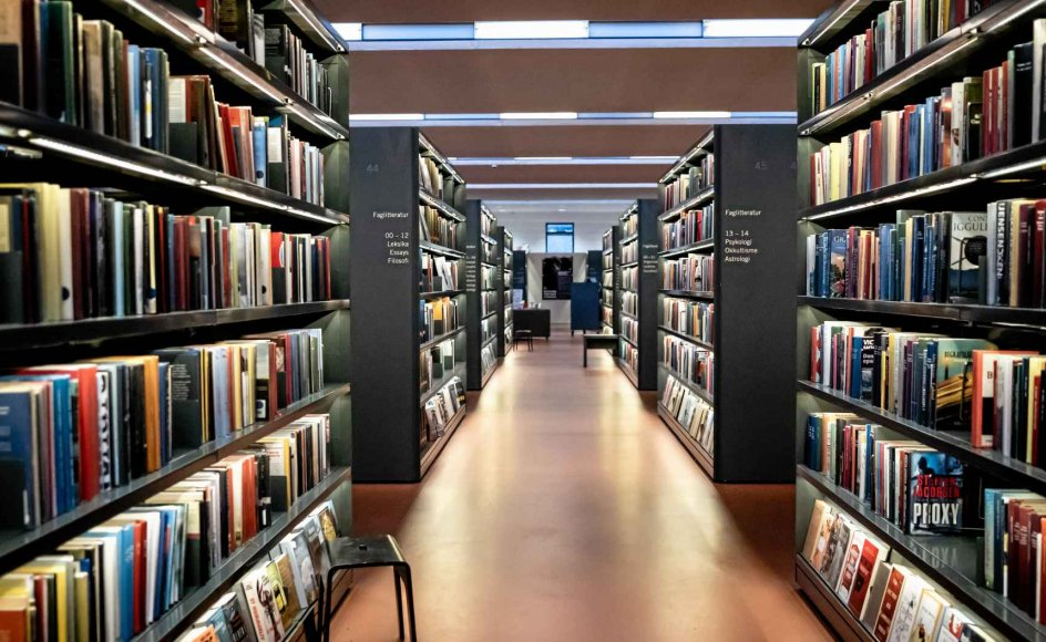 For mange mindre bysamfund er biblioteket der, hvor man kan få en kulturindsprøjtning i det daglige. Den mulighed forsvinder de næste to uger. – Foto: Kim Matthai Lela/Ritzau Scanpix.