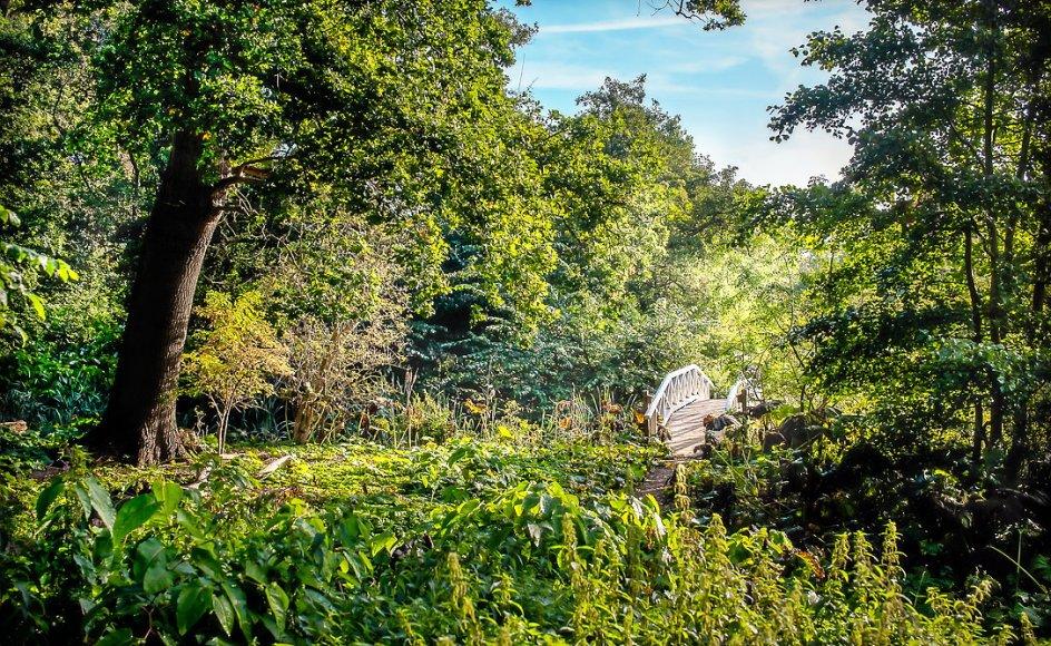 """Karen Blixen Museum har udviklet ruten til """"Danske Digterruter"""" i Karen Blixens fuglereservat, der er placeret i landskabet omkring forfatterens barndomshjem, Rungstedlund i Nordsjælland."""