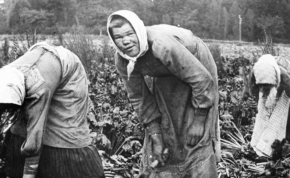 """I første afsnit af DR2-serien """"Indvandringens historie"""" møder vi roepolakkerne, det 20. århundredets første gæstearbejdere."""