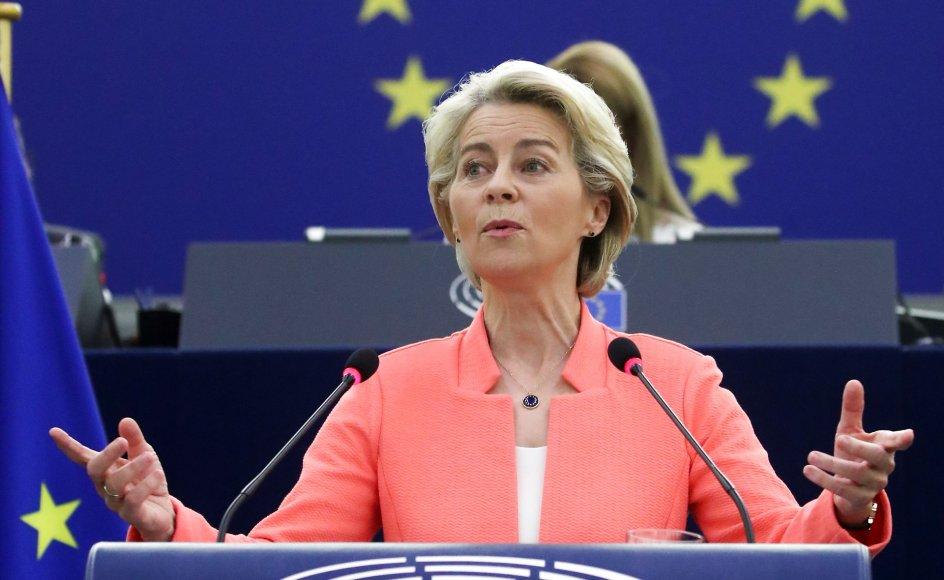 Europa skal fremstå som en langt stærkere og mere selvstændig spiller, der kan varetage egne interesser og bidrage aktivt til stabilitet i verden med en kombination af diplomati, udviklingshjælp, men også militær styrke, sagde Ursula von der Leyen.