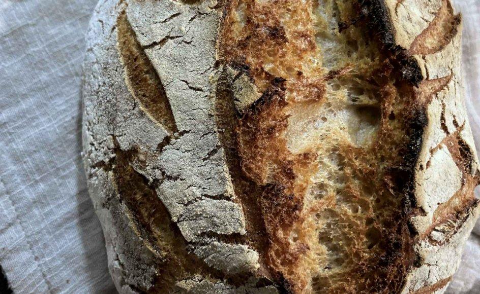 Dagens brød skal bages i en støbejernsgryde. Vær opmærksom på, at ikke alle støbejernsgryder er egnet til bagning. Gryder, som kan bruges til bagning, kan man købe fra omkring 250 kroner. – Foto: Else Marie Nygaard.