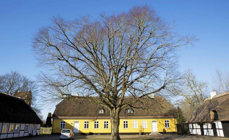 Skævinge præstegård i Hillerød Kommune er en af 150 fredede præstegårde. – Foto: Nana Reimers/Ritzau Scanpix.