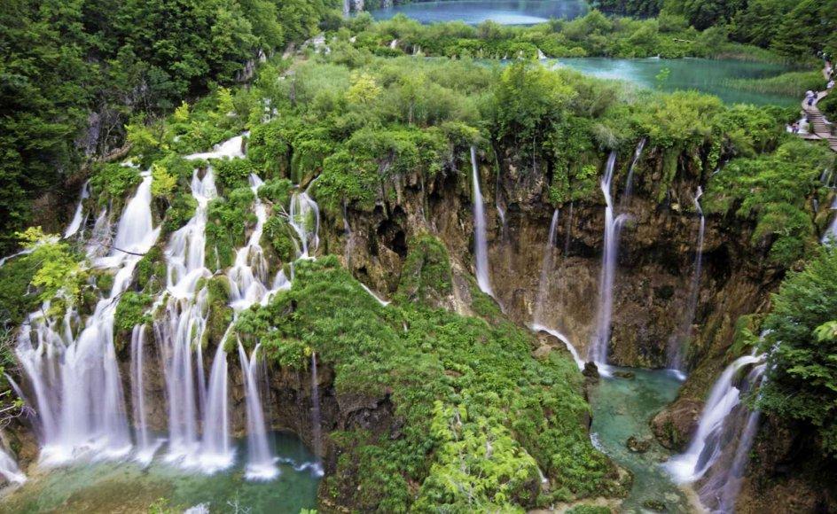 Rejsen til Kroatien byder blandt andet på en udflugt til søerne i naturparken Plitvice.  – Foto: Nikpal/Getty Images Plus.