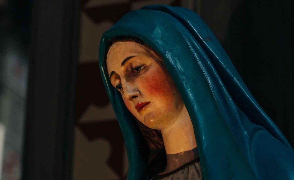 Jomfru Maria beskrives i evangelierne primært i sin funktion som mor til Jesus, og i Johannesevangeliet omtales hun endda konsekvent blot som Jesu mor.