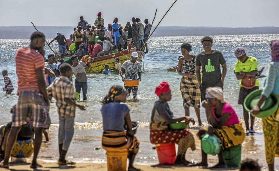 I den nordlige del af Mozambique har Islamisk Stat skabt så meget frygt, at mange af områdets indbyggere er flygtet til andre dele af landet, som det ses på billedet. – Foto: Ricardo Franco/EPA/Ritzau Scanpix.