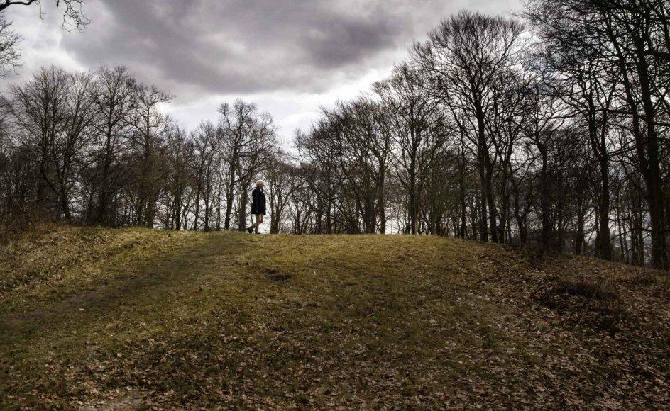 Der mødte mange op til hekseafbrændinger, og børnene fik endda fri for skole, siger Torben Bramming, der her ses på Galgebakken ved Ribe, hvor hekse blev henrettet for 400 år siden.
