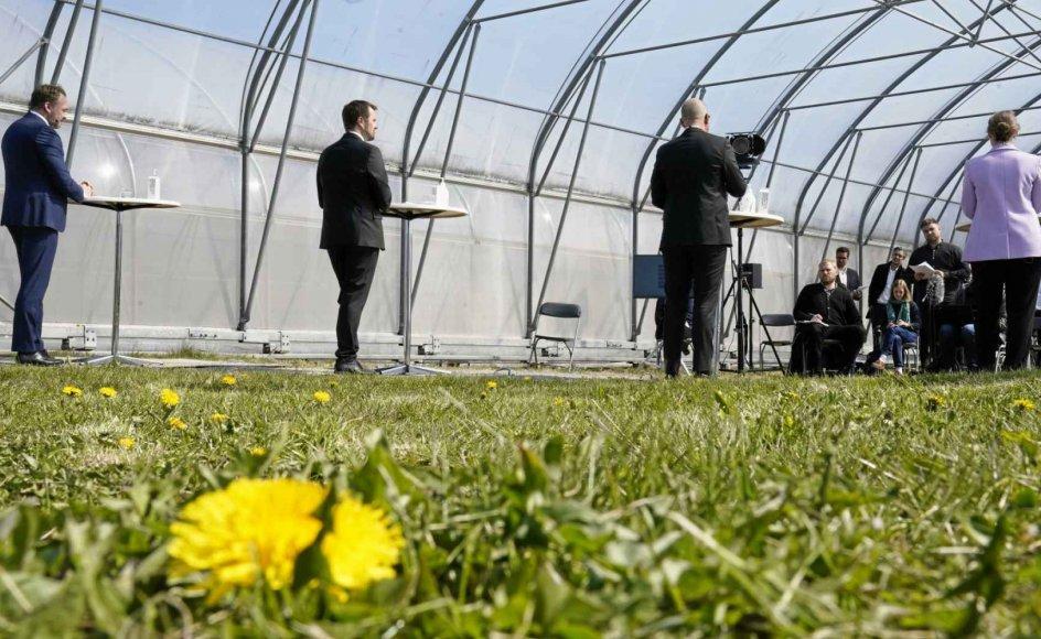 Mælkebøtter var en del af scenariet, da regeringen i går præsenterede sit grønne udspil på Landbohøjskolen i Taastrup. Fra venstre er det klima-, energi- og forsyningsminister Dan Jørgensen, erhvervsminister Simon Kollerup, fødevare-, landbrugs- og fiskeriminister Rasmus Prehn og miljøminister Lea Wermelin, der taler til pressen.  - Foto: Mads Claus Rasmussen/Ritzau Scanpix.