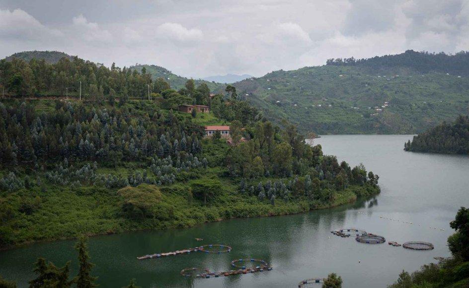 Rwanda er et billedskønt land, men under overfladen lurer flere væsentlige demokratiske problemer. Landet nævnes som et varmt bud på, hvor et dansk modtagecenter for asylbehandling kan ligge. (Arkivfoto)