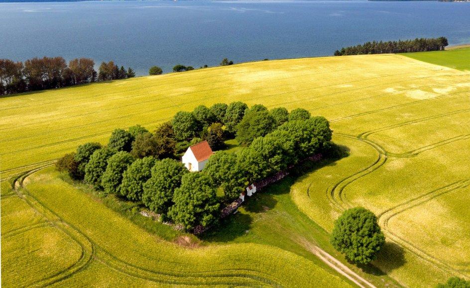 I mere end 1000 år har herre-, proprietær- og lystgården Rolsøgård været omdrejningspunkt for livet ved landsbyen Vrinners på Mols, og den nu næsten øde kirkegård fortæller historien om menneskene på gården og egnen.