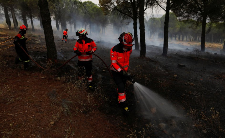 Brandmænd slukker resterne af en skovbrand nær kystbyen Estepona i det sydlige Spanien.